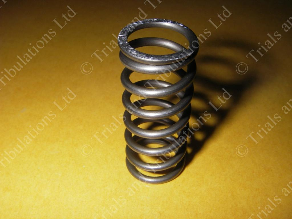 Gas-Gas 93-03 edition clutch springs (priced each)
