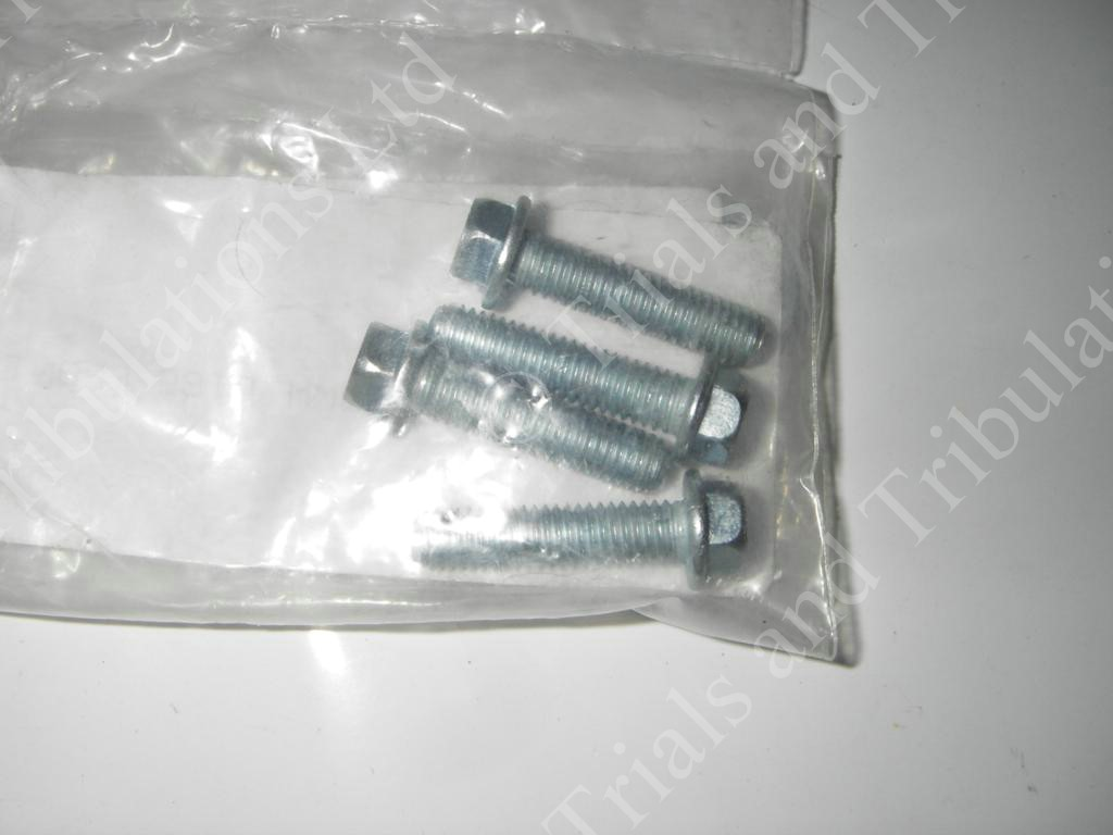 Gas-Gas brake disc bolts (priced each)