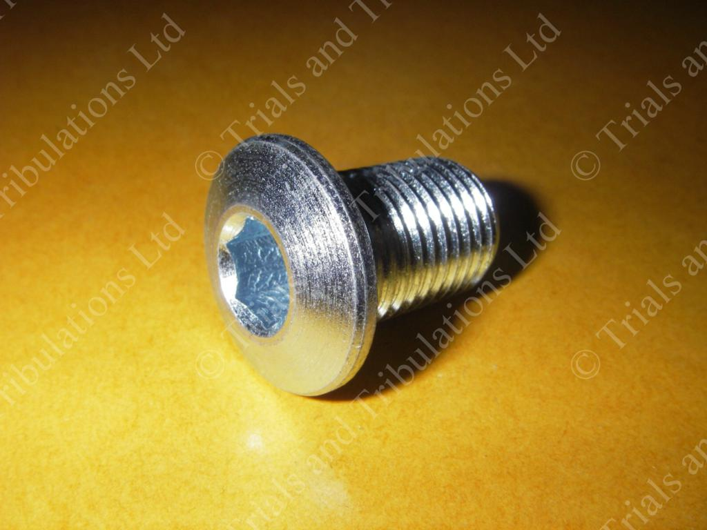 Gas Gas Pro (all years ) swingarm spindle bolt