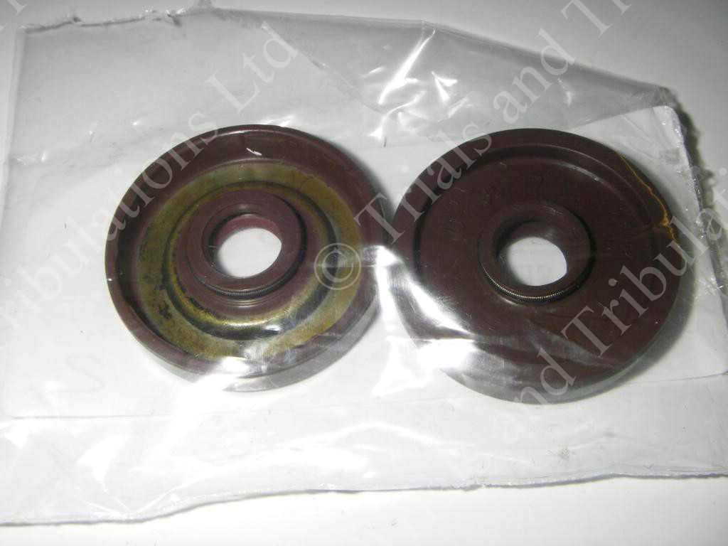 Gas-Gas Pro waterpump seal
